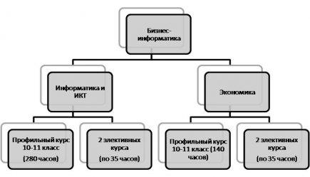 """Схема организации обучения в рамках направления """"Бизнес-информатика"""""""